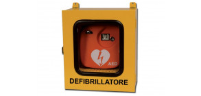 Alarmed enclosures for external defibrillators